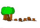 Bild Abholzung