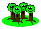 Bild Bäume