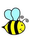 Bild Biene