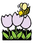 Bild Biene und Tulpen
