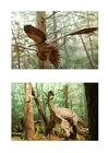 Bild Dinosaurier mit Federn