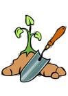 Bild einen Baum pflanzen