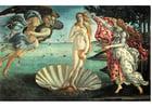 Bild Geburt der Venus - Sandro Botticelli