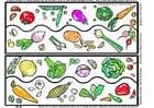 Bild Gemüsesammlung