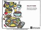 Bild gesunde Nahrung