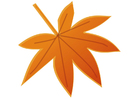 Bild Herbstblatt