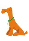 Bild Hund - sitzen