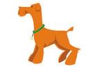 Bild Hund - stehen