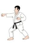Bild Judo