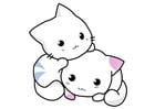 Bild Kätzchen