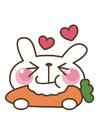 Bild Karotte - Kaninchen