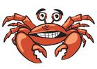 Bild Krabbe
