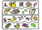 Bild Obstsammlung