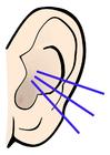 Bild Ohr - Geräusch