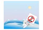 Bild Polarbärschutz