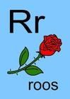Bild r
