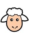 Bild Schaf