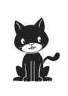 Bild schwarze Katze