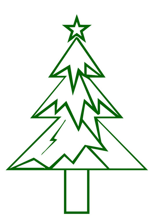 Bild Tannenbaum.Bild Tannenbaum Mit Weihnachtsstern Abb 20394 Images