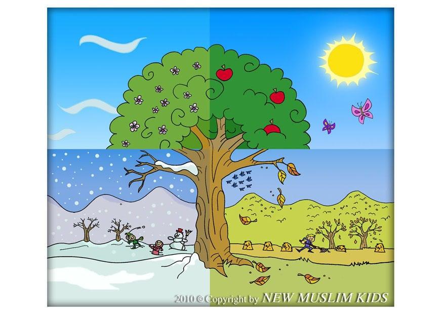 Malvorlagen Vier Jahreszeiten Baum | My blog