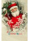 Bild Weihnachtsgrüsse