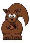 Bild z1-Eichhörnchen