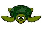 Bild z1-Schildkröte