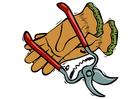 Bild Zange und Handschuhe