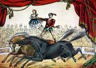 Bild Zirkus