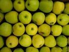 Foto Äpfel