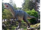 Foto Allosaurus Kopie