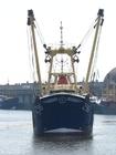 Foto Fischerboot 3