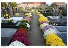 Foto Friedhof
