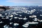 Foto Gletscher und Eisberge