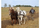 Foto pflügender Landwirt