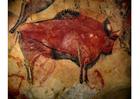 Foto prähistorische Malerei - Bizon
