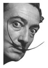 Fotos Salvador Dali