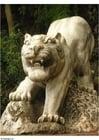 Foto Tiger im Park Leshan