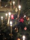Foto Weihnachtsbaum mit Kerzen