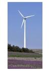 Foto Windmühle