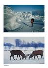 Foto Winter 3