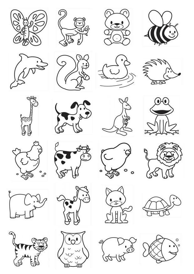 Malvorlagen, Basteln und Fotos | Unterrichtsmaterial
