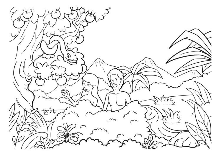 Malvorlage Adam und Eva | Ausmalbild 29826.