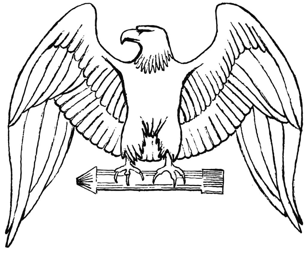 Malvorlage Adler Ausmalbild