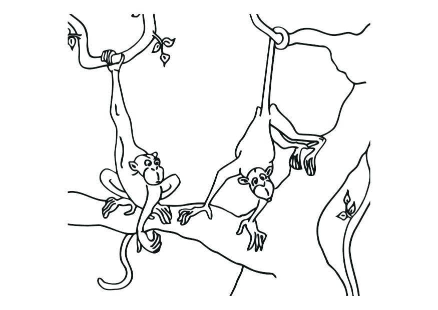 Tolle Malvorlagen Affen Springen Bett Fotos - Beispiel ...