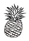 Malvorlage  Ananas