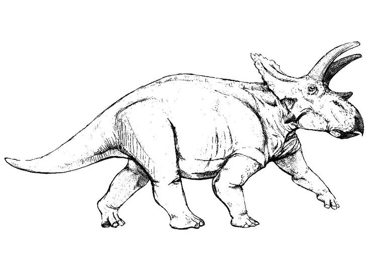 Die 50 Besten Malvorlagen Von Dinosaurier 2019