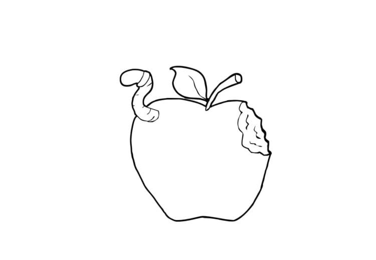 Malvorlage Apfel | Ausmalbild 13753.