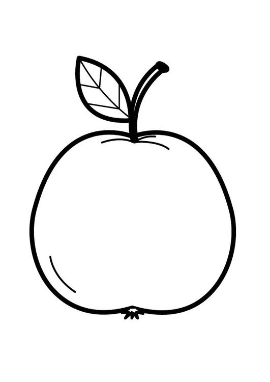 kostenlose malvorlagen apfel  zeichnen und färben