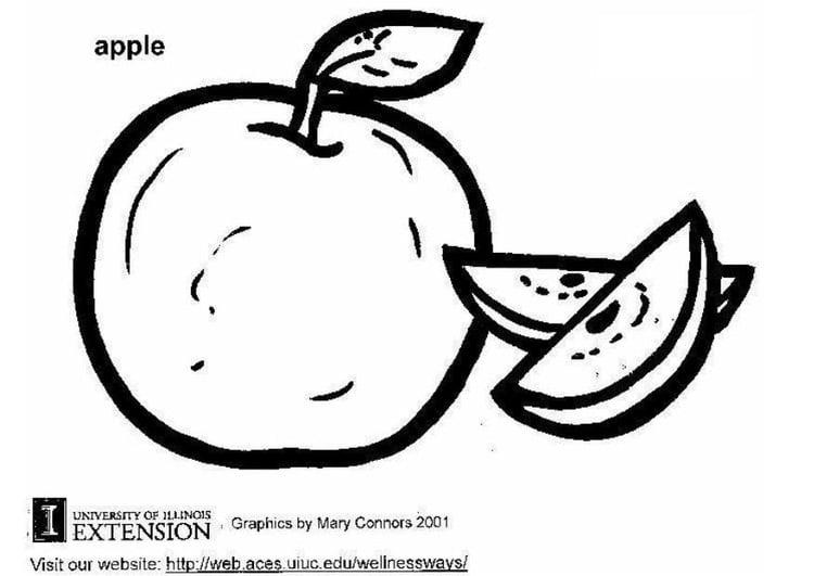 Malvorlage Apfel | Ausmalbild 5776.